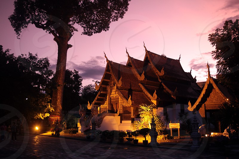 the  Wat Chedi Luang Tempel in the city of chiang mai in the north of Thailand in Southeastasia. 