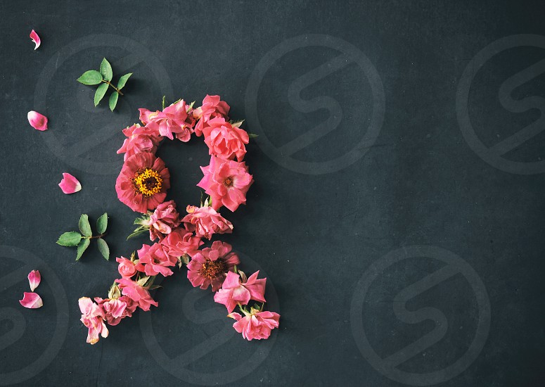 Pink flowers make breast cancer awareness ribbon on black background with copy space. photo