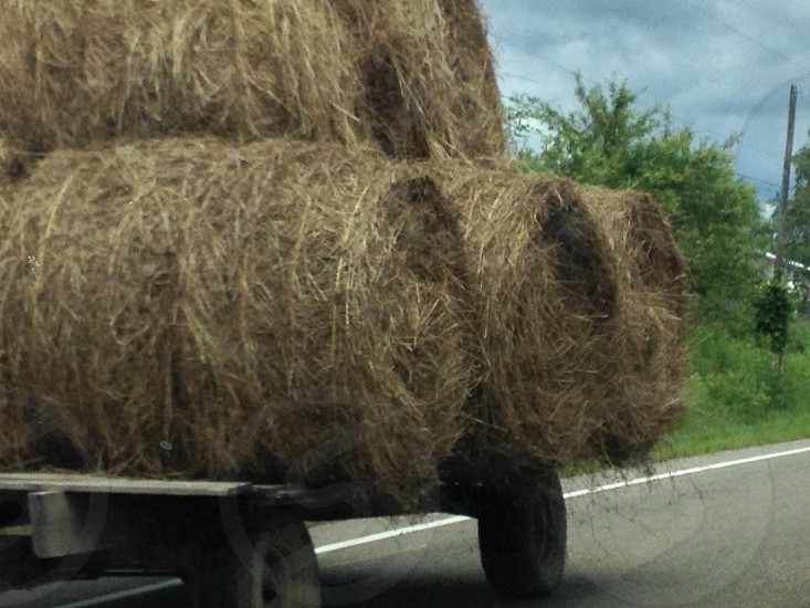 Hay bails being transported by Amish farmers in Ohio USA  photo