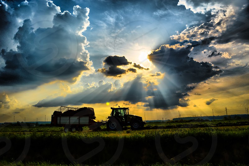 Working in a field at last sunrises photo