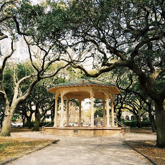 Gazebo in Charleston South Carolina photo