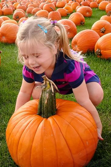 The big pumpkin photo