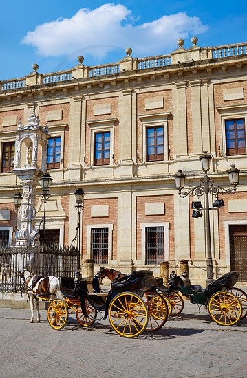 Seville Archivo Indias horse carriage in Sevilla Andalusia Spain photo