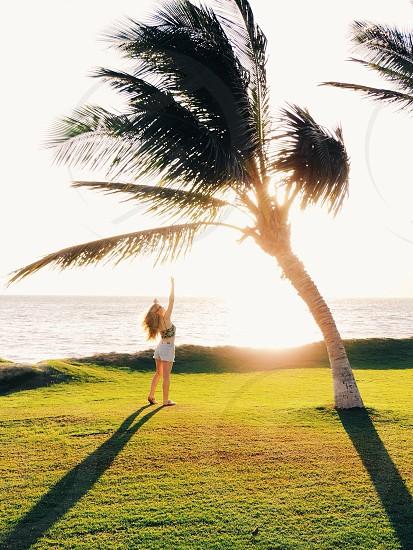 Maui Hawaii  photo