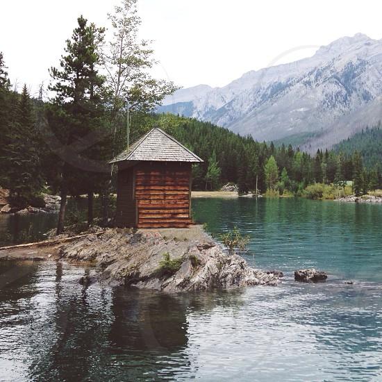brown log cabin photo