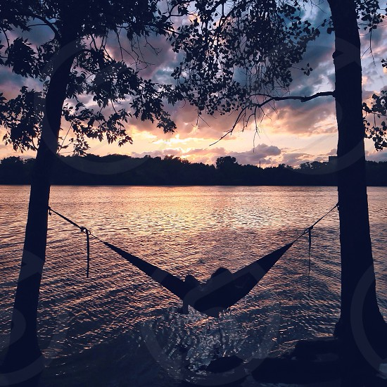 hammock between trees above water photo