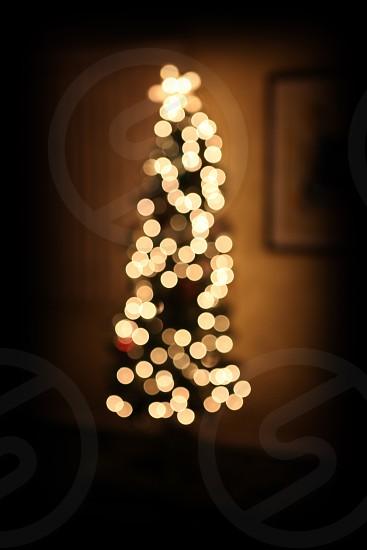 christmas lights turned on photo