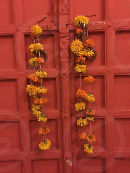 yellow flower garland hanged on the red door photo