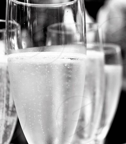 Sparkling wine... photo