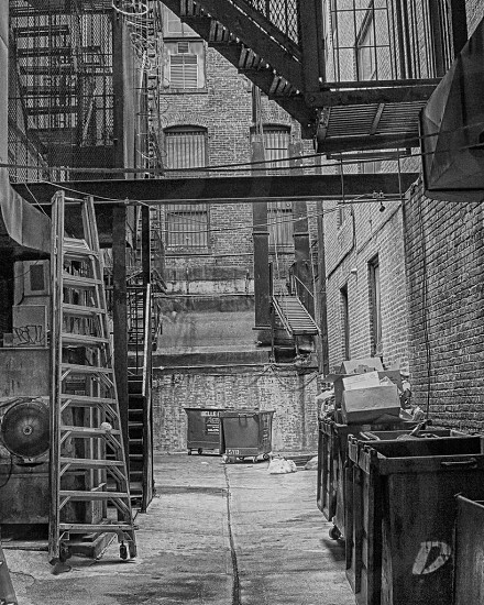 grayscale photo of portable ladders on alley with brick walls photo