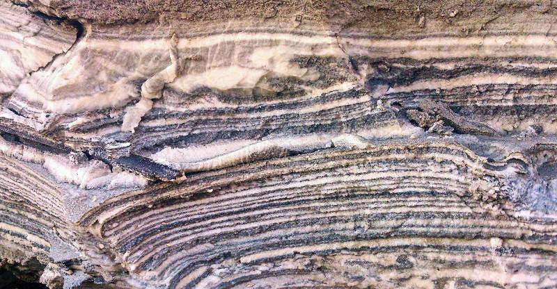 Mud of the Dead Sea. Summer. Israel. photo