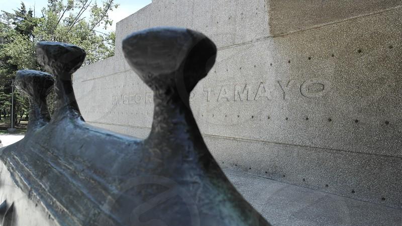 museo Tamayo cdmx musrums arquitectura México photo