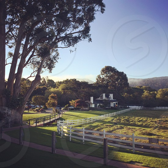 Carmel California farm farmhouse pasture sunrise photo