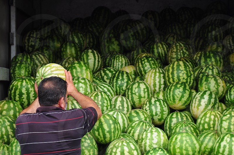 man wearing black polo shirt with red white horizontal accent stripes standing in front of wall of watermelons photo