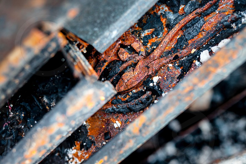 brown and orange rusted cutting pliers selective focus at daytime photo