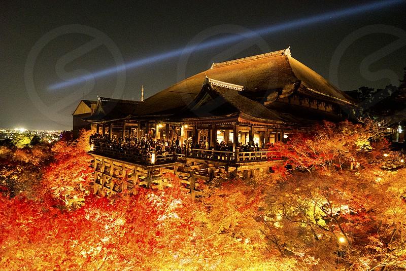 京都 清水寺の舞台本堂(国宝)の写真です。 京都、清水寺、紅葉、秋 photo