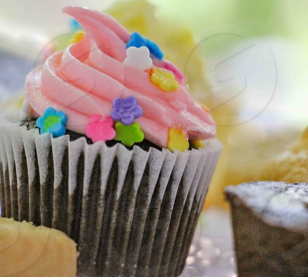 chocolate cupcake with pink frosting and star candy sprinkles photo
