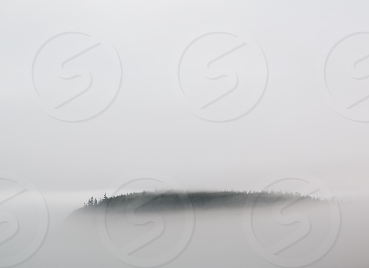 FOG COVER photo