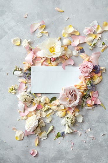 white piece of paper and pastel-colored flowers on a concrete background flat lay photo
