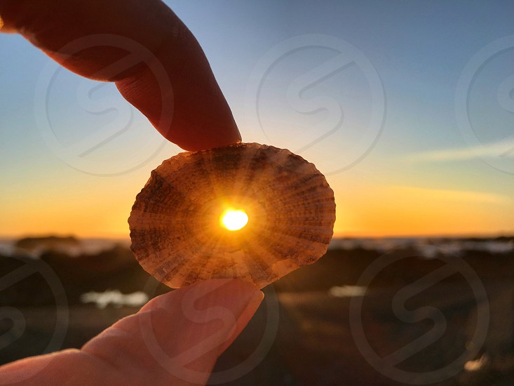 Sun light rays coming through a hole in a seashell beach at sunset hand holding a shell light positivity hope photo