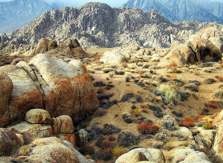 Misty mountains rocky hills and a variety of desert vegetation all come together in this diverse landscape. photo