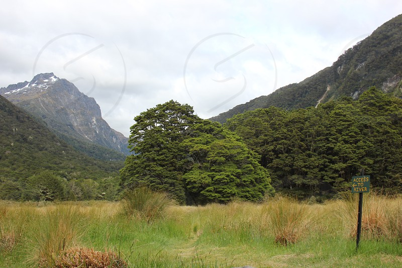 In the Valley (Kepler Track New Zealand) photo