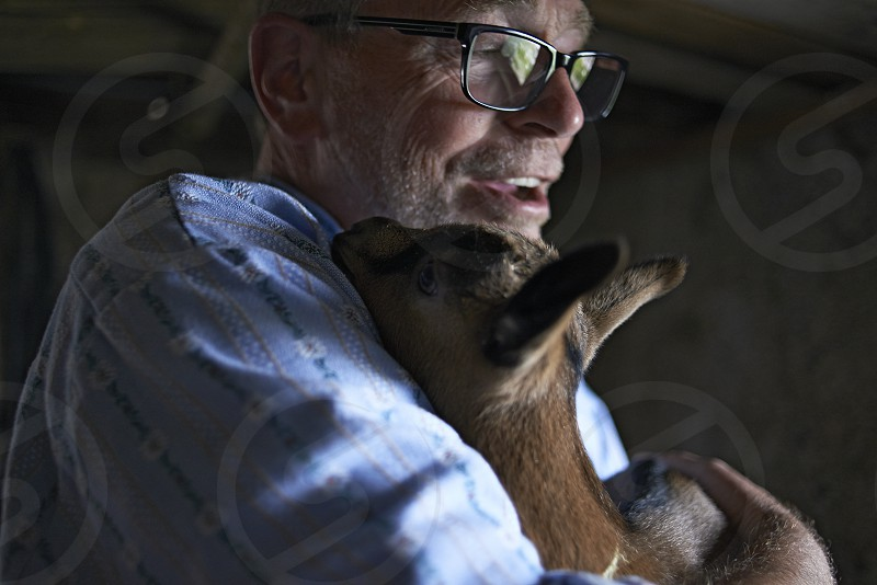Elderly caucasian farmer proudly cuddling his new born baby goat inside the stables photo