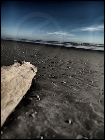 beach ocean pacific Washington drift wood sand dark sunset photo