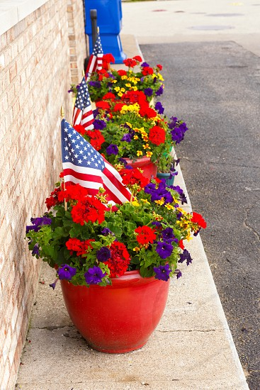 US Flags in Potted Plants photo
