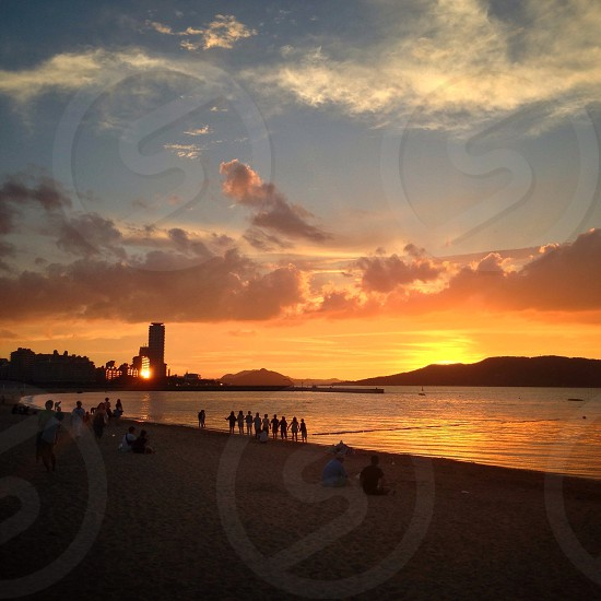 people roaming around shore with sunset scenery on sea photo