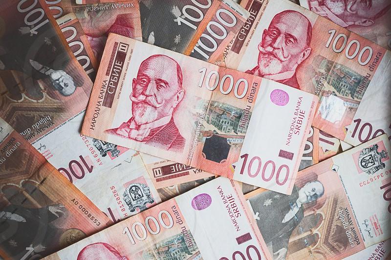 Serbian money a thousand dinar banknotes.  photo