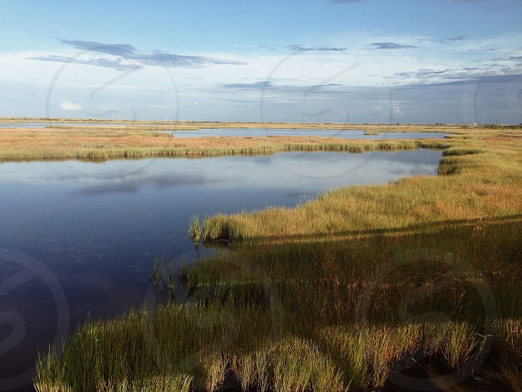 Australia marsh landscape wetlands beach photo