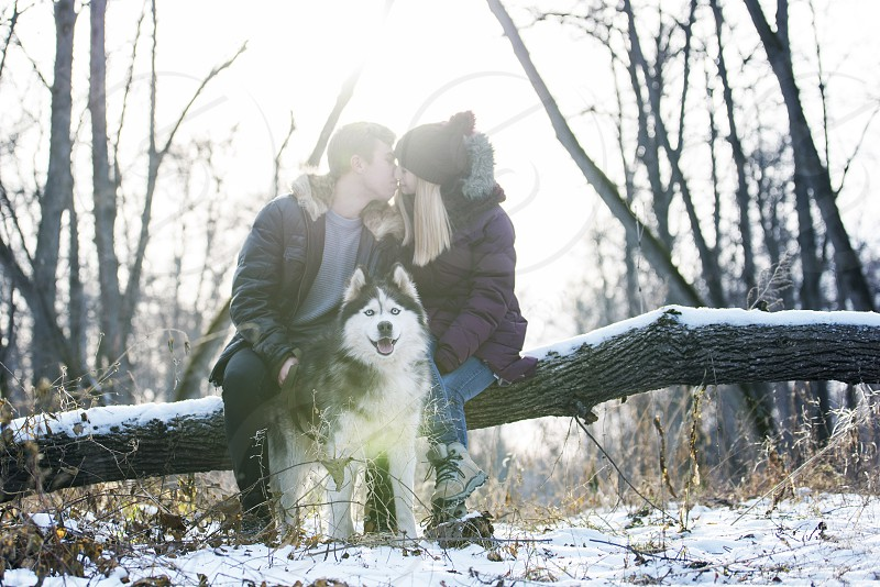 A young couple and husky in the winter forest photo