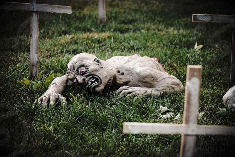 half body ghoul crawling in green grass cemetery during daytime photo