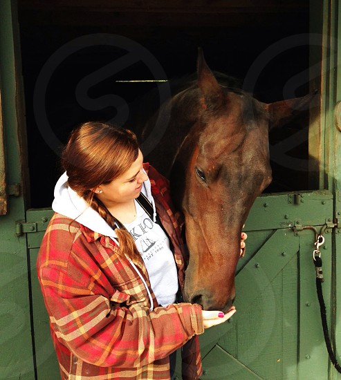 woman holding brown horse photo