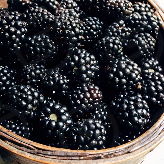 blackberries in a basket photo