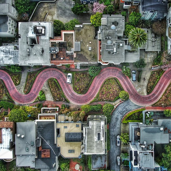 A unique perspecrive of iconic Lombard Street San Francisco. photo