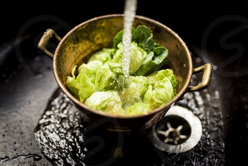 Brussels sprouts being washed photo