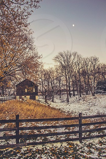 brown wooden cabin at the forest photo