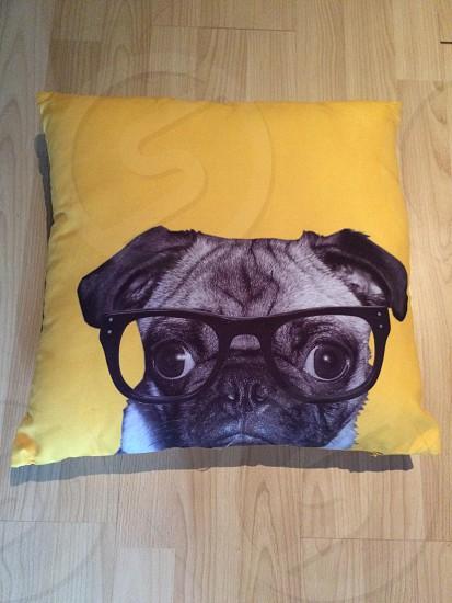 Yellow pug pillow photo