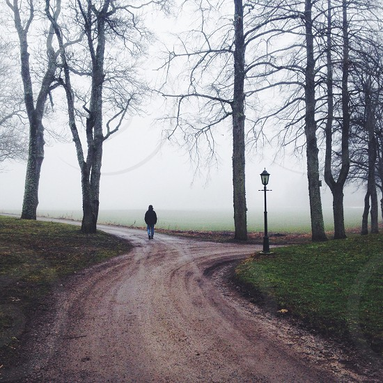 person walking on land road photo