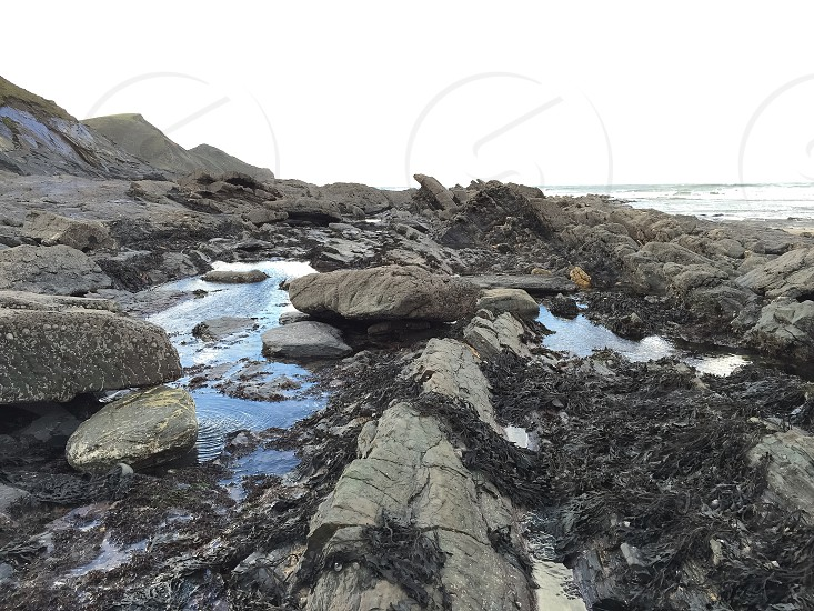 Sea shore beach photo