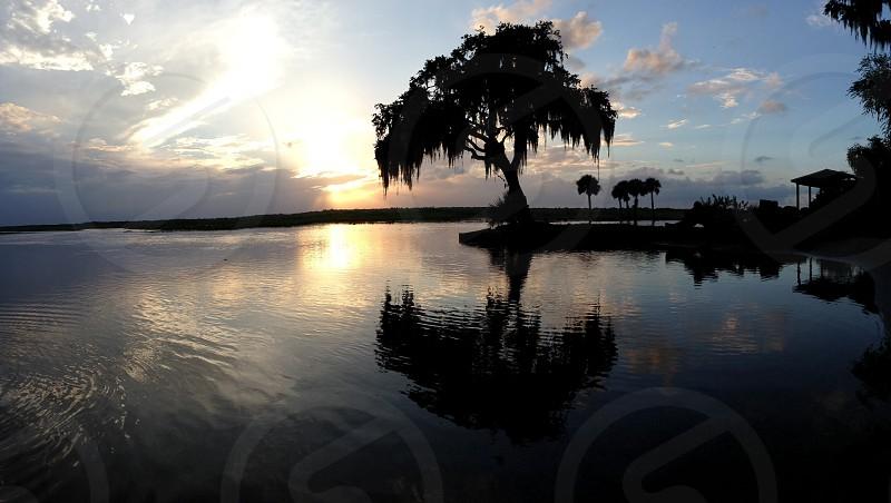 swampy sunset photo