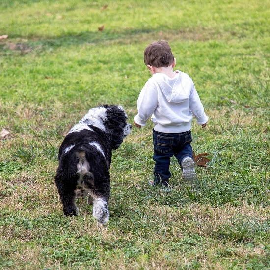 Young boy walking with his dog in a park photo