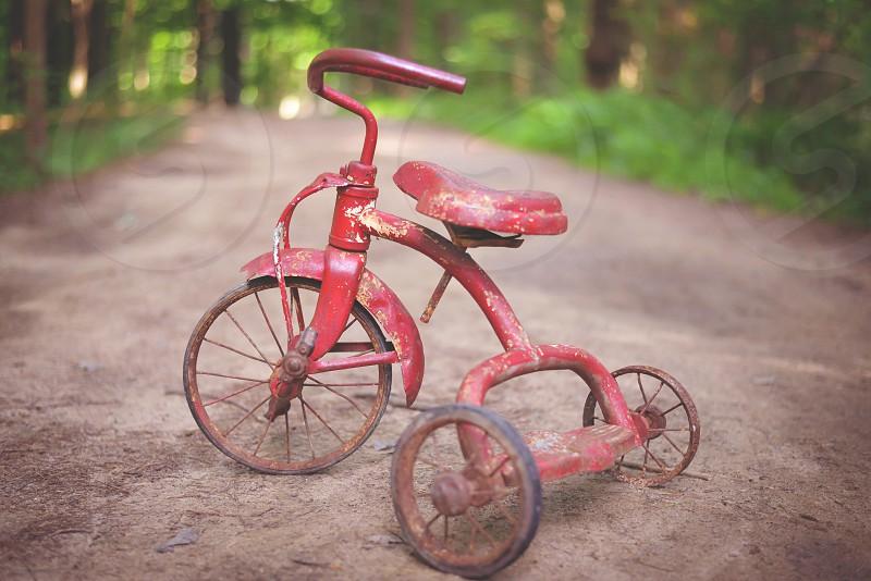 Vintage tricycle photo