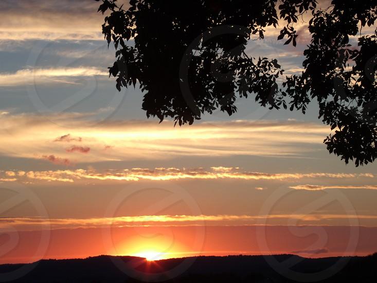 sunset tree mountain cloud pink sky photo