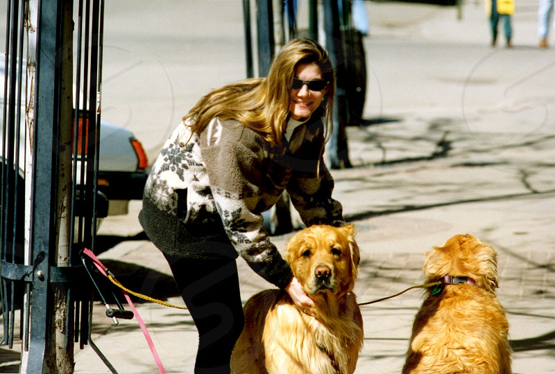Woman and Golden Retrievers Vail CO USA photo