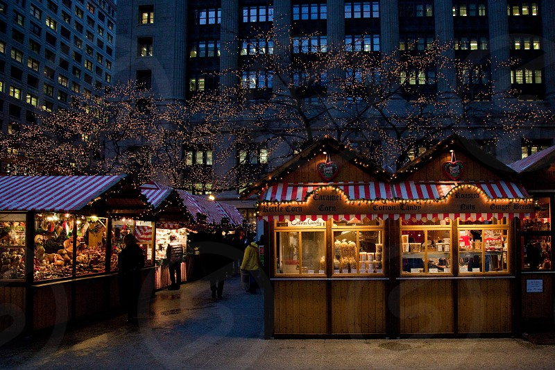 Daley Square in Chicago during Christmas photo