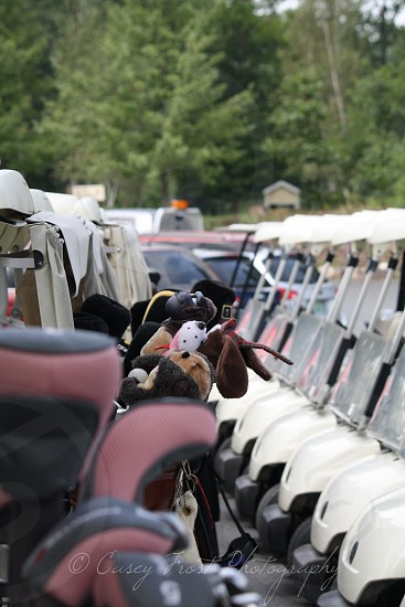Golf Carts Golfing photo