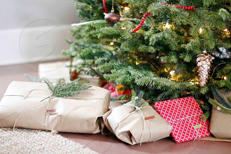 Wrapped presents lying under the christmas tree photo